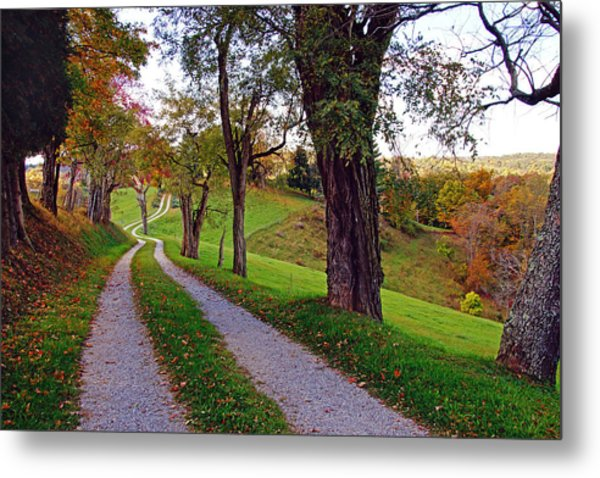 The Long Road In Autumn Metal Print