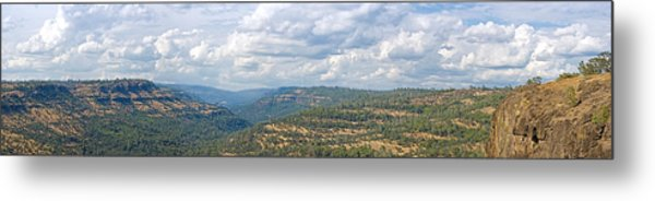 The Long View Metal Print by Charlie Osborn