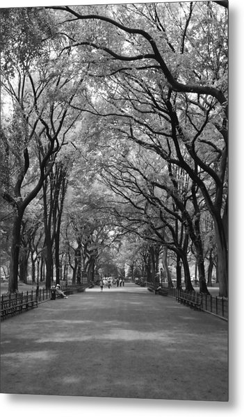 The Mall In Central Park And Poets Walk Metal Print