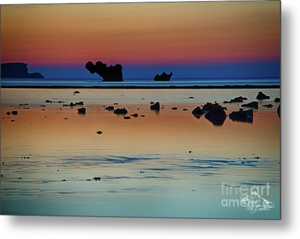 The Many Shades Of Beauty Metal Print