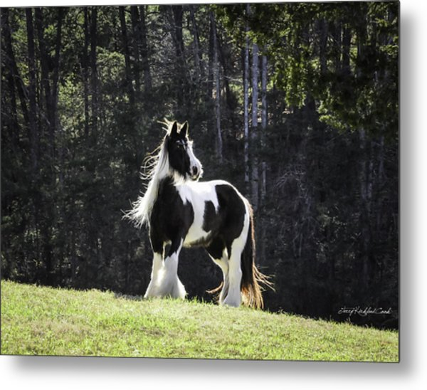 The Matriarch Metal Print