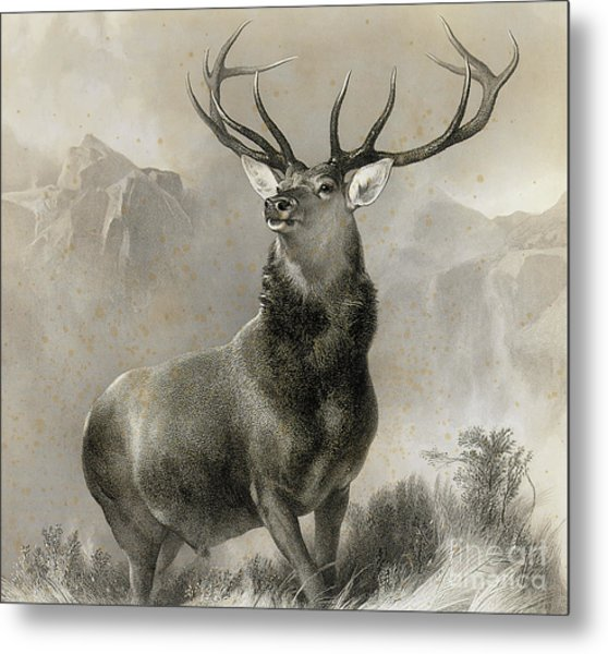 The Monarch Of The Glen, 1852 Metal Print