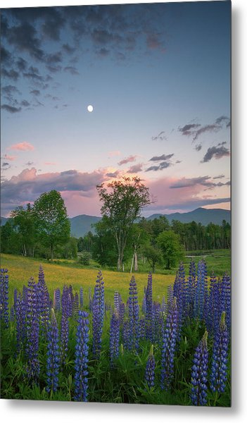 The Moon Rises Above Metal Print
