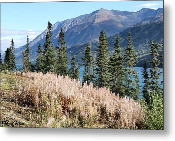 The Mountains Metal Print by Dennis Stein