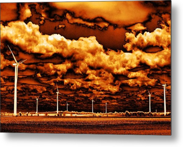 The New Trees Metal Print