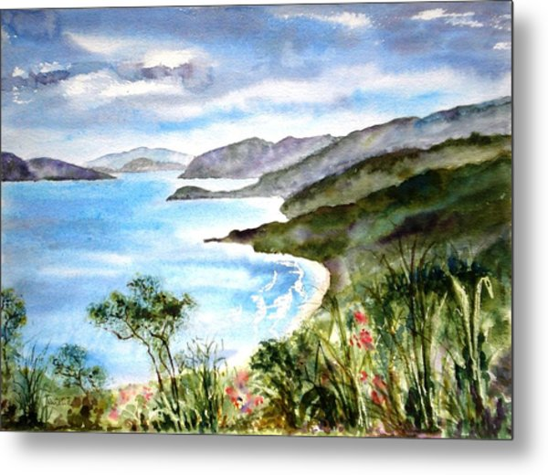 The North Shore Metal Print