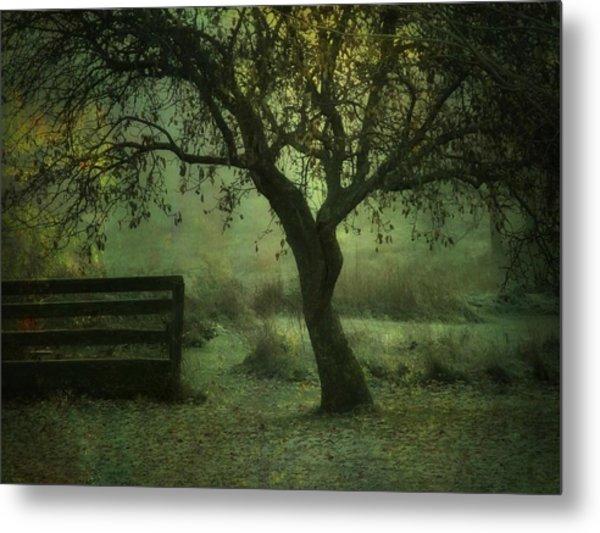 The Old Apple Tree Metal Print
