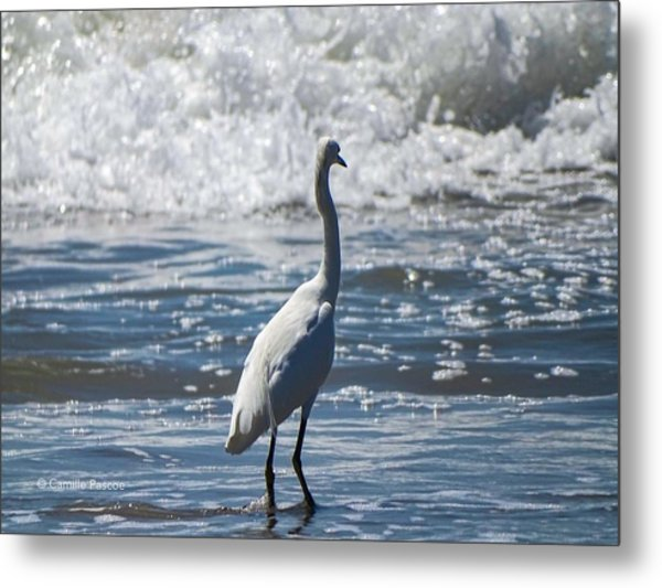 Egret And The Waves Metal Print