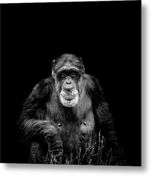 The Old Boy Metal Print