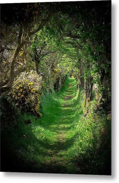 The Old Road Metal Print by Cat Shatwell