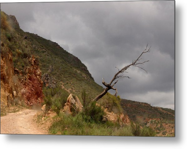 The Old Road From Las Canteras Metal Print by Jez C Self