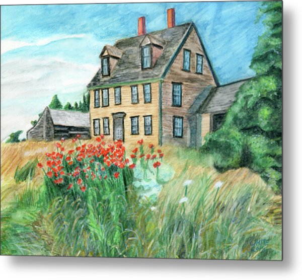 The Olson House With Poppies Metal Print