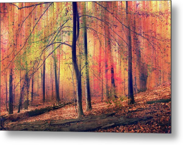 Metal Print featuring the photograph The Painted Woodland by Jessica Jenney