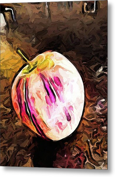 The Pale Pink Apple With The Hot Pink Stripes Metal Print