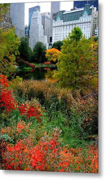 The Park And The Plaza Metal Print