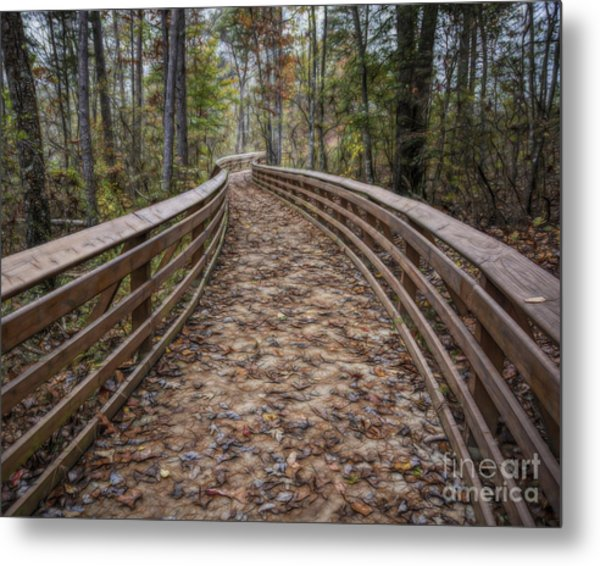 The Path That Leads Metal Print