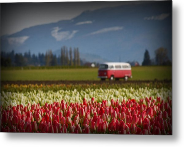 The Perfect Parking Spot Metal Print by Karla DeCamp