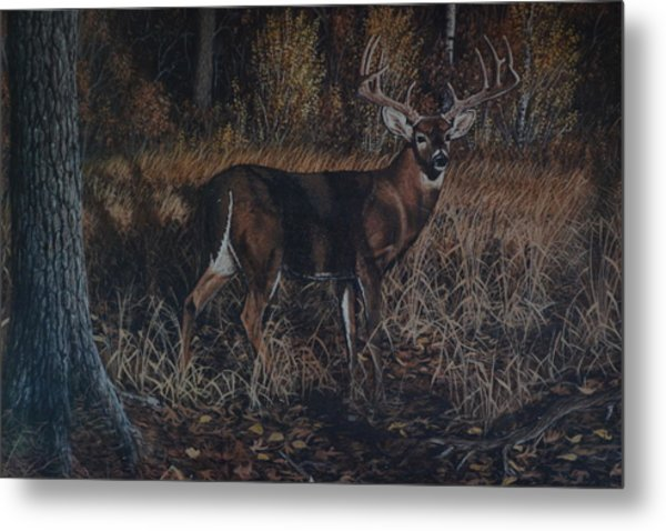 The Phantom Buck Metal Print