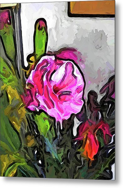 The Pink Flower With The Burgundy Buds Metal Print