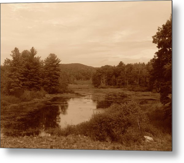 The Pond Metal Print by Eric Radclyffe