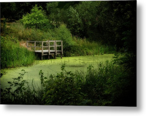 Metal Print featuring the photograph The Pond by Jeremy Lavender Photography