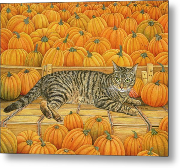 The Pumpkin Cat Metal Print