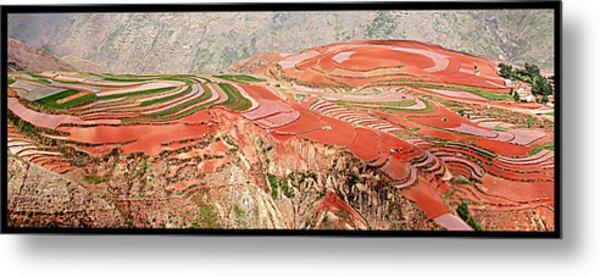 The Redlands, Yunnan, China Metal Print