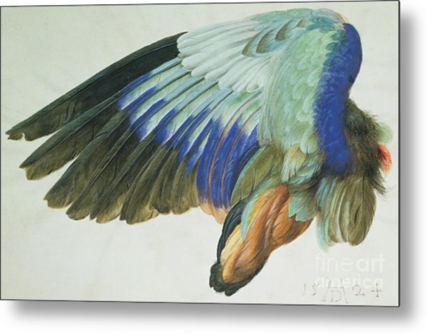The Right Wing Of A Blue Roller Metal Print