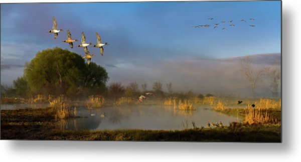 The River Bottoms Metal Print