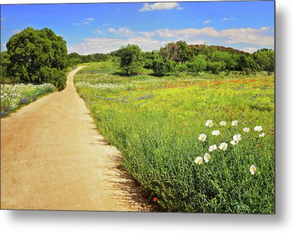 The Road Home Metal Print