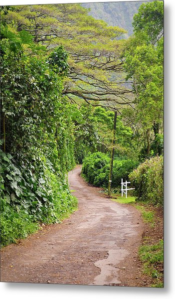 The Road Less Traveled-waipio Valley Hawaii Metal Print