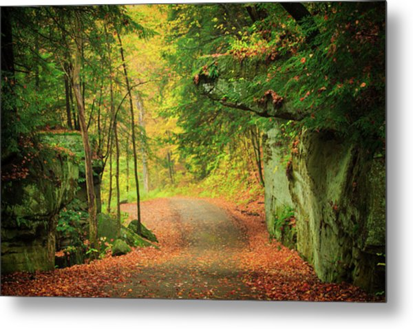 The Road To The Mill  Metal Print