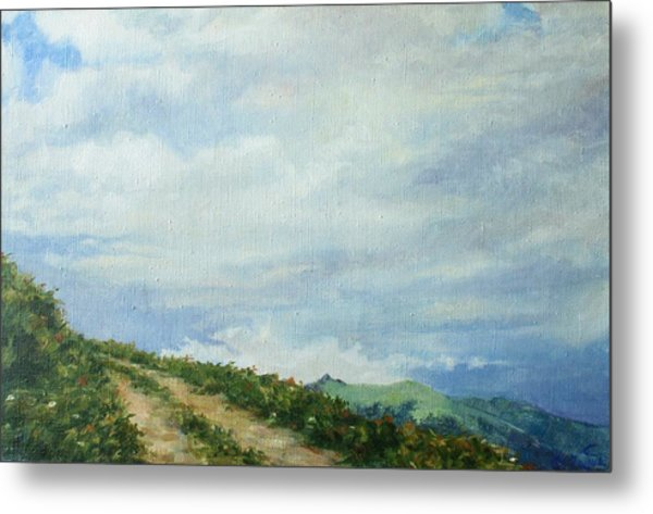 The Road To The Mountain Metal Print