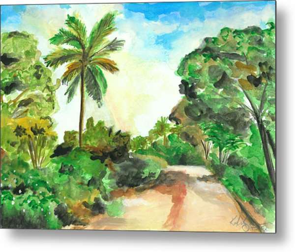 The Road To Tiwi Metal Print