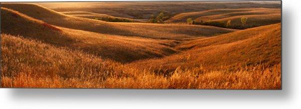 The Rolling Hills Of Konza Prairie Metal Print