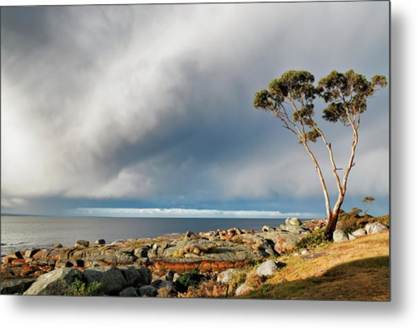 Metal Print featuring the photograph The Sea And The Sky by Nicholas Blackwell