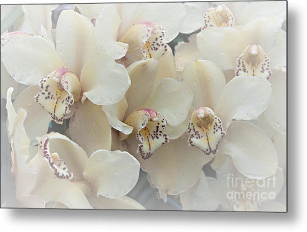 The Secret To Orchids Metal Print