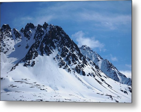 The Sentinel Metal Print by Helen Carson