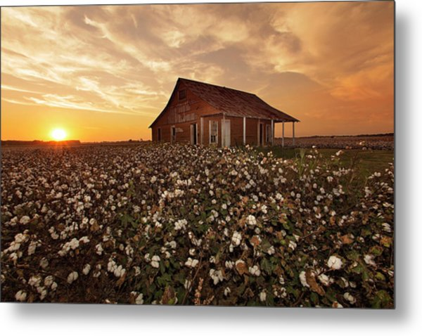 The Sharecropper Shack Metal Print