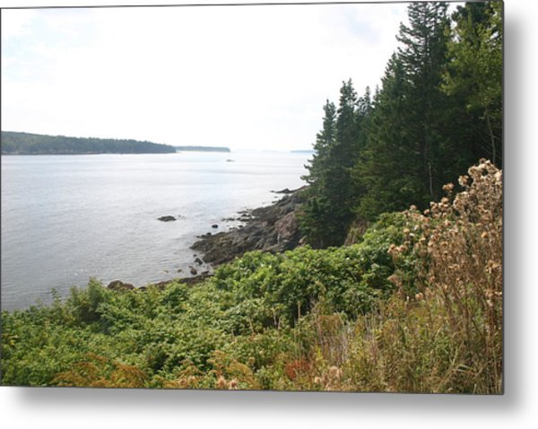 The Shore Metal Print by Dennis Curry
