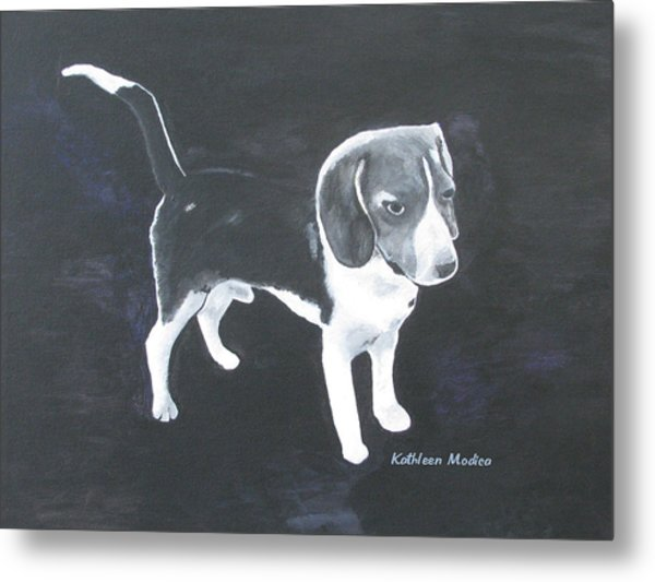 The Shy Beagle Metal Print