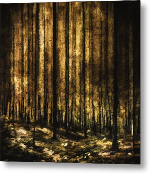The Silent Woods Metal Print