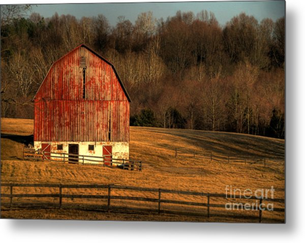 Metal Print featuring the photograph The Simple Life by Lois Bryan