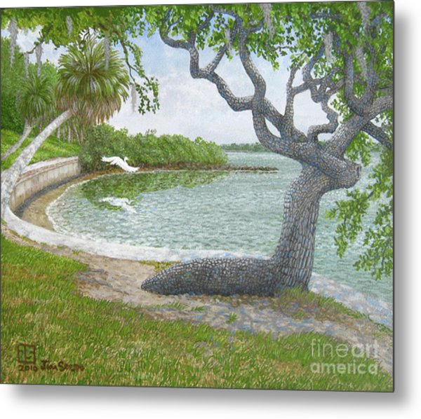 The Sitting Oak Tree Metal Print by Jim Soldo