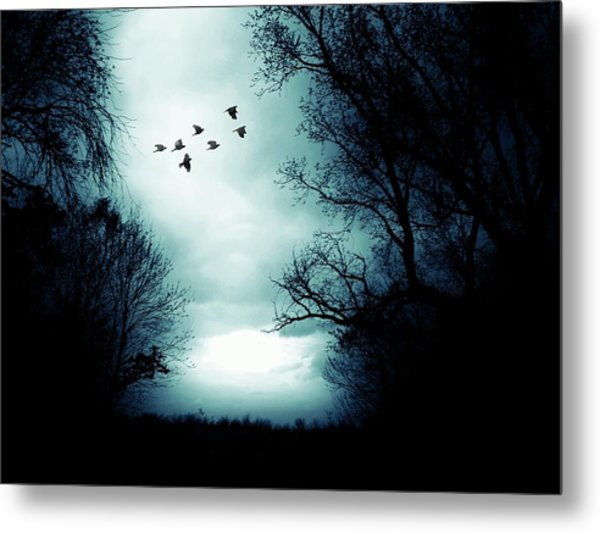 The Skies Hold Many Secrets Known Only To A Few Metal Print