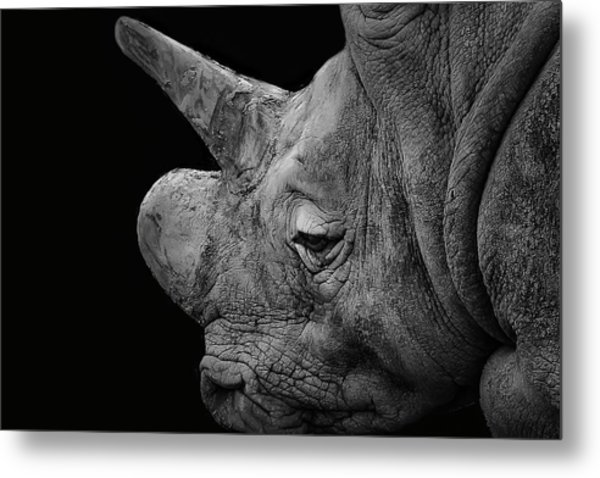 The Sleepy Rhino Metal Print