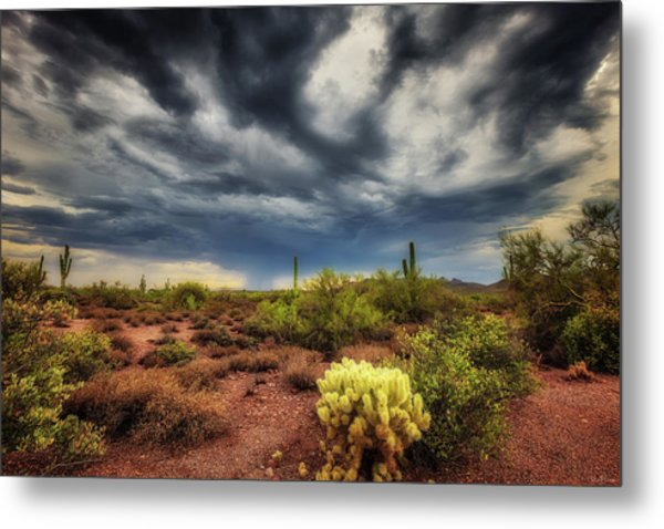 Metal Print featuring the photograph The Smell Of Rain by Rick Furmanek