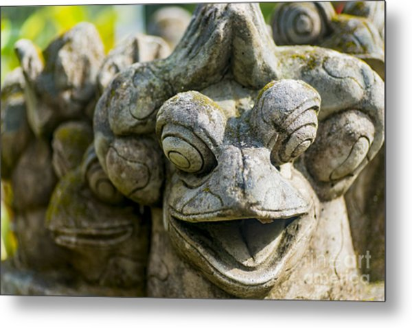 the Smiling Frog Metal Print