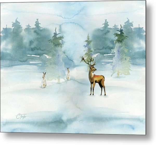 The Soft Arrival Of Winter Metal Print