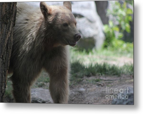 The Spirit Bear Metal Print